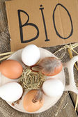 Eggs on wooden background. Organic products concept — Stock Photo