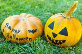 Halloween pumpkins on green grass — Zdjęcie stockowe