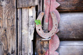 Old horse shoe — Foto de Stock