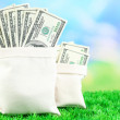 Lot of one hundred dollar bills in bags on grass — Stock Photo #55350051