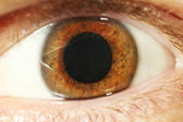 Human eye close-up — Stock Photo