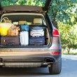 Suitcases and bags in trunk of car ready to depart for holidays — Stock Photo #55637407