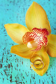 Wedding rings and orchid flower, close-up, on color wooden background — Stock Photo
