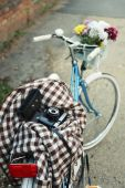 Old bicycle with flowers — Foto Stock