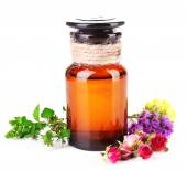 Essential oil with different medicine plants — Stock Photo