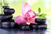 Spa stones, bamboo branches — Stock Photo