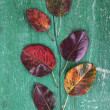 Dark red leaves on green wooden background — Stock Photo #56119175