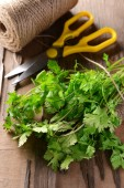 Green Cilantro on table — Stock Photo
