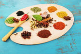 Painting palette with various spices and herbs — 图库照片