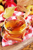 Apple cider with cinnamon sticks — Stock Photo