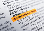 Word highlighted with orange marker — Stock Photo