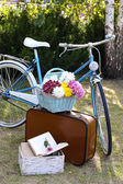 Bicycle and brown suitcase — Foto de Stock