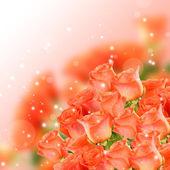 Bouquet of beautiful roses on light background — Foto de Stock