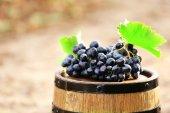 Grape on barrel, outdoors — Stock Photo