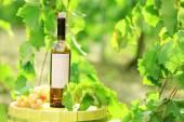 Lezzetli şarap üzüm çiftlik arka plan üzerinde ahşap varil üzerinde — Stok fotoğraf