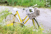 Bicycle with retro radio in meadow during sunset  — Stock Photo