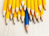 Individuality concept. Pencils close-up — Stock Photo