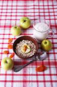 Bowl of oatmeal, yogurt and apples on checkered fabric background — Stock Photo