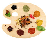 Painting palette with spices — Stock Photo