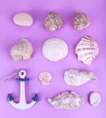 Sea souvenirs on purple background — Stock Photo