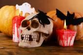 Composition of decorative skull — Fotografia Stock