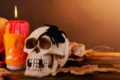 Composition of decorative skull — Stock Photo