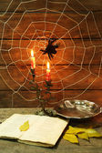 Halloween decoration with spider — Stok fotoğraf