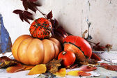 Pumpkins and leaves on board — Stock Photo