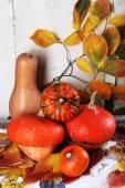 Pumpkins and leaves on board — Foto de Stock
