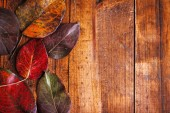 Autumn leaves on brown wooden background — Stock Photo