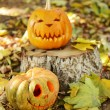 Pumpkins for holiday Halloween on old tree stump — Stock Photo #56463349