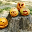 Pumpkins for holiday Halloween on old tree stump — Stock Photo #56463215