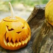 Pumpkins for holiday Halloween on old tree stump — Stock Photo #56463223