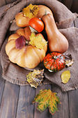 Pumpkins on sackcloth with leaves — Stock Photo