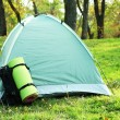 Touristic tent on green grass in a forest — Stock Photo #56586577