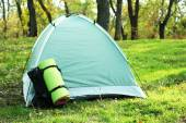Touristic tent on green grass in a forest — Stock Photo