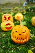Pumpkins for holiday Halloween — Stock Photo