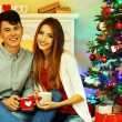 Nice love couple sitting with mugs in front of fireplace near Christmas tree. Woman and man celebrating Christmas — Stock Photo #56791143