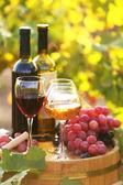 Tasty wine on wooden barrel on grape plantation background — Fotografia Stock