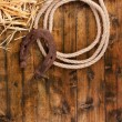 Old horseshoe and cowboy lasso — Stock Photo #56883665