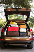 Suitcases and bags in trunk of car — Stock Photo