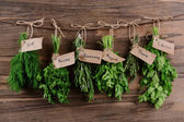 Different fresh herbs — Stock Photo