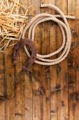 Old horseshoe and cowboy lasso — 图库照片