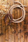 Old horseshoe and cowboy lasso — Stock Photo