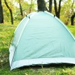 Touristic tent on green grass — Stock Photo #57034373