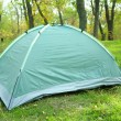 Touristic tent on green grass — Stock Photo #57034379