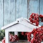 Handmade birdhouse with berries — Stock Photo #57036057