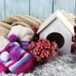 Handmade birdhouse with berries — Stock Photo #57036073