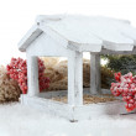 Handmade birdhouse with berries — Stock Photo #57036101