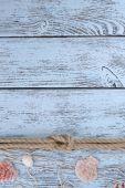 Marinho nó na madeira — Fotografia Stock